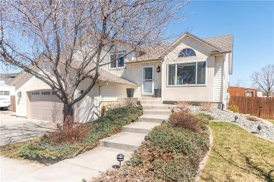 Billings Single Family Home For Sale: 1905 Morocco Drive