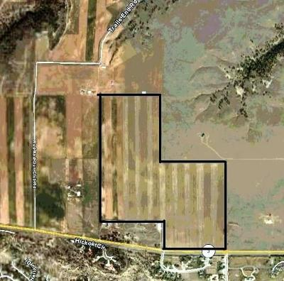 Commercial For Sale: Hwy 3, 0 Airport Road