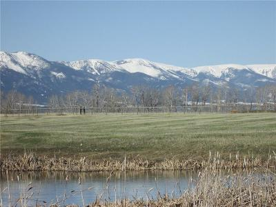 Red Lodge Residential Lots & Land For Sale: Lot 21 Horseshoe Trail
