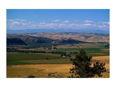 Park City Residential Lots & Land For Sale: 250 Valley Creek Rd