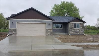 Billings Single Family Home For Sale: 1423 Tania Circle