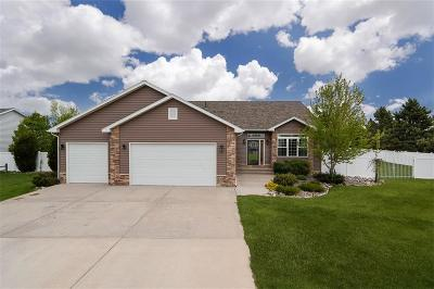 Billings Single Family Home For Sale: 3440 Masterson Circle
