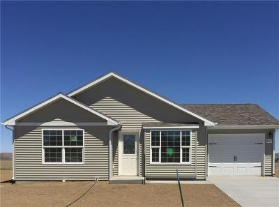 Single Family Home For Sale: 2206 Sierra Vista Circle