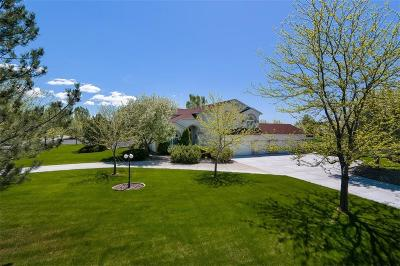 Billings Single Family Home For Sale: 835 Bluegrass Drive East