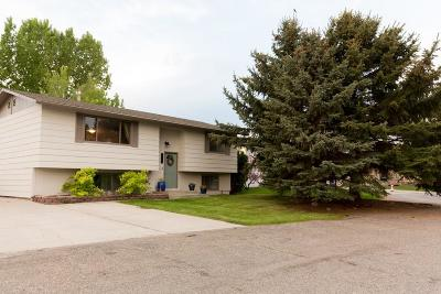 Billings Single Family Home For Sale: 3700 Relay Drive