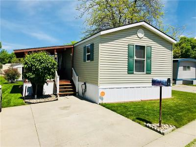 Billings Single Family Home For Sale: 3 Woodgrain Drive