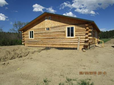 Single Family Home For Sale: 78 10 Mile Creek Road