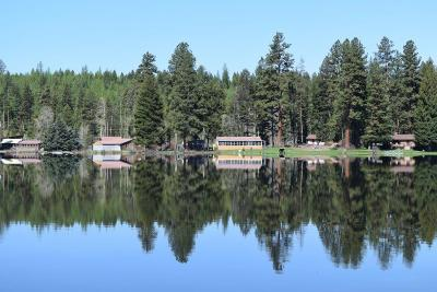 Single Family Home For Sale: 8619 N Placid Lake Rd, Seeley Lake