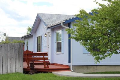Columbus Single Family Home For Sale: 1033 Woodbine Creek Drive