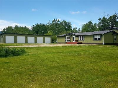 Red Lodge Single Family Home For Sale: 75 Two Mile Bridge