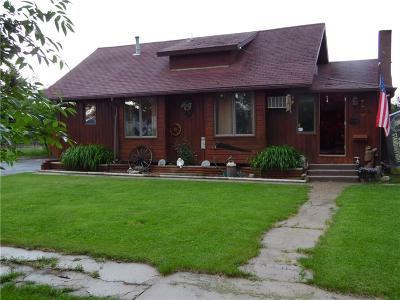 Single Family Home For Sale: 622 SE 2nd Street