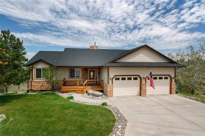 Billings Single Family Home For Sale: 4383 Stout Creek Trail