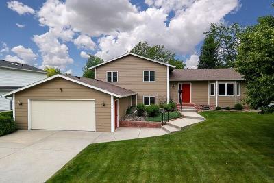 Single Family Home For Sale: 2212 Elsa Drive