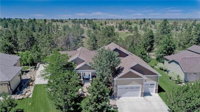 Billings Single Family Home For Sale: 4426 Iron Horse Trail