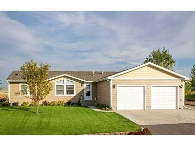 Single Family Home For Sale: 3805 Louis Drive
