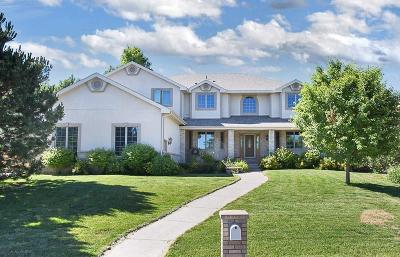 Billings Single Family Home For Sale: 4521 Rio Vista Drive