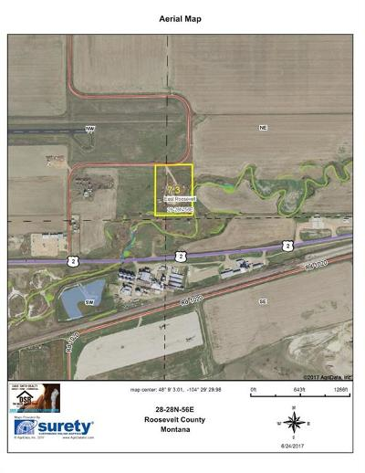 Fallon County, Roosevelt County, Wibaux County Commercial For Sale: 1098 E County Road Road E