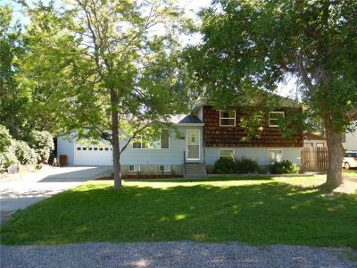 Single Family Home For Sale: 233 Rolling Meadow Dr