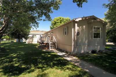 Park City Single Family Home For Sale: 601 1st Avenue SW