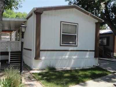 Billings Single Family Home For Sale: 4 Jackie Lane