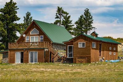 Single Family Home For Sale: 436 Stevens Hill Road
