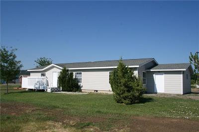 Columbus Single Family Home For Sale: 1023 Glacier Creek Drive