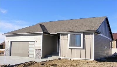 Billings Single Family Home For Sale: 6301 Southern Bluffs