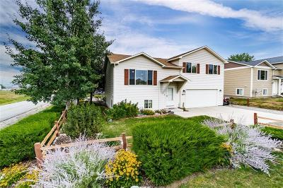 Single Family Home For Sale: 2907 Unertal Avenue