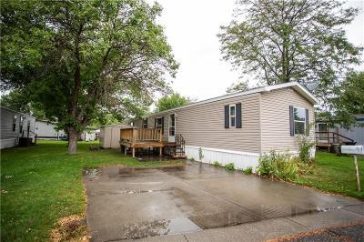 Single Family Home For Sale: 20 Wheatland