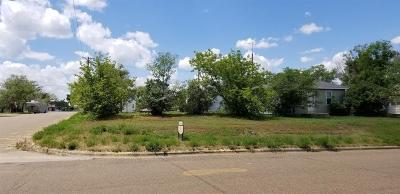 Fallon County, Roosevelt County, Wibaux County Residential Lots & Land For Sale: 523 S 3rd Street W