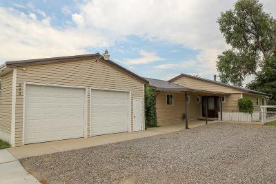 Single Family Home For Sale: 923 Bench Blvd