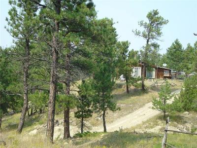 Single Family Home Contingency: 100 Eagle Ridge Road