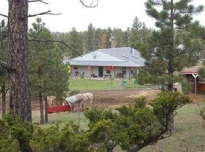 Single Family Home For Sale: 94 Eagle Ridge Rd