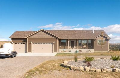 Single Family Home For Sale: 4240 Valley Canyon Ranch Road