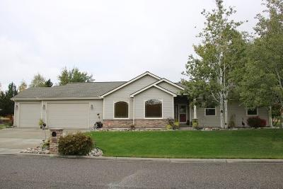 Single Family Home For Sale: 412 Tamarisk Drive