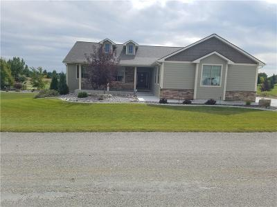 Single Family Home For Sale: 2460 Saddleback Drive