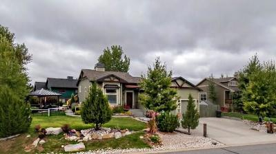 Billings Single Family Home For Sale: 4152 Iron Horse Trail