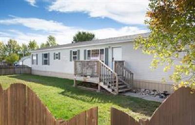 Single Family Home For Sale: 29 Hartland Street N