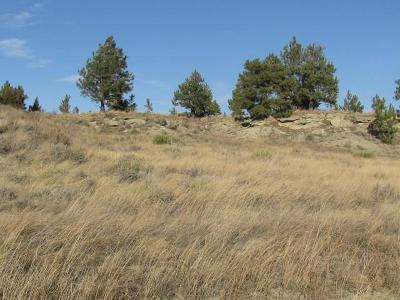 Musselshell County Residential Lots & Land For Sale: 8 Roundup Mesa Rd