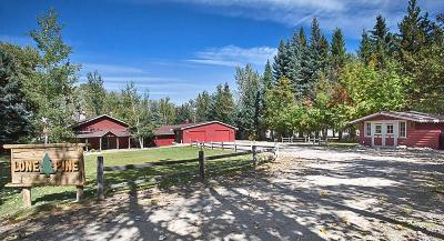 Red Lodge MT Single Family Home For Sale: $1,395,000