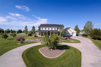 Laurel Single Family Home For Sale: 1800 Pheasant Brook Drive