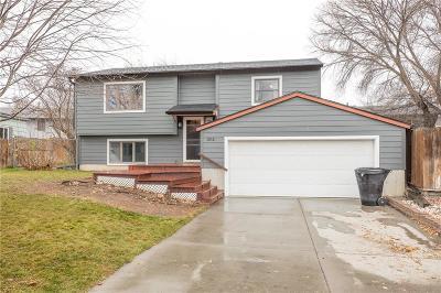 Billings Single Family Home For Sale: 3831 Chamberlain Drive