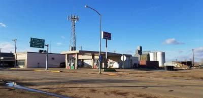 Fallon County, Roosevelt County, Wibaux County Commercial For Sale: 19 E Montana Ave