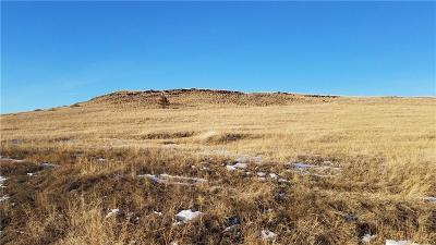 Absarokee Residential Lots & Land For Sale: 20 Crow Child Trail
