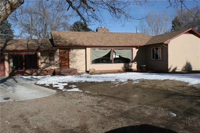 Billings Single Family Home For Sale: 1217 Lewis Avenue