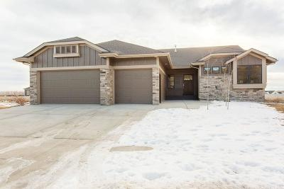 Billings Single Family Home For Sale: 4622 Silver Creek Trail