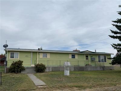 Single Family Home For Sale: 207 3rd Avenue SE