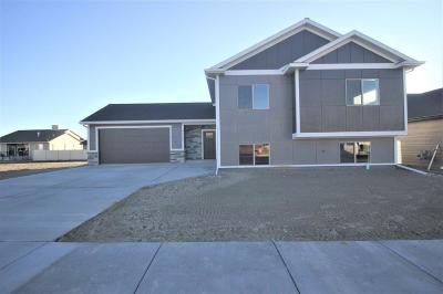 Yellowstone County Single Family Home For Sale: 5230 Chapel Hill