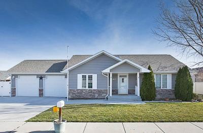 Billings Single Family Home For Sale: 3027 Hunters Ridge Loop S