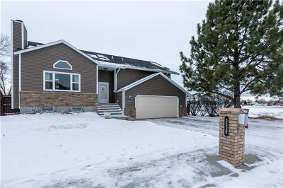 Billings Single Family Home For Sale: 3330 Shenandoah Drive
